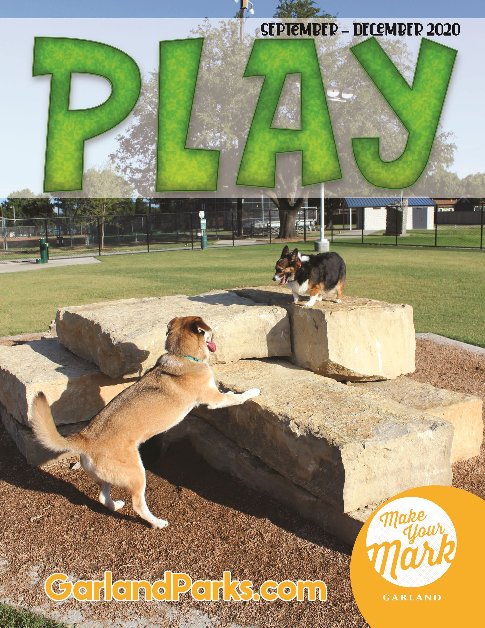 Fall 2020 Play Guide with dog at dog park on front cover