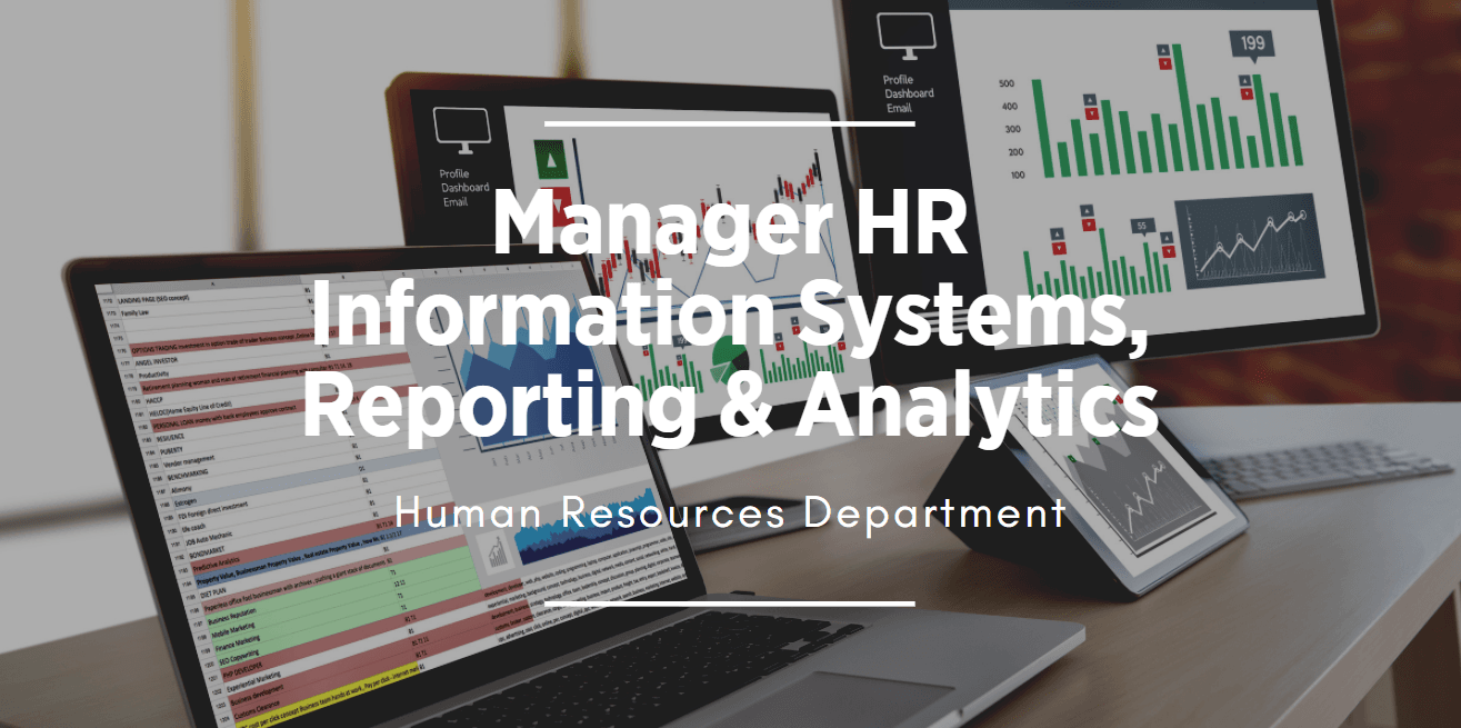 Image of data charts link to Manager HR System, Reporting and Analytics position